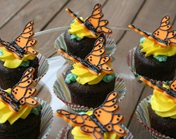 Butterfly Cupcakes 2.jpg